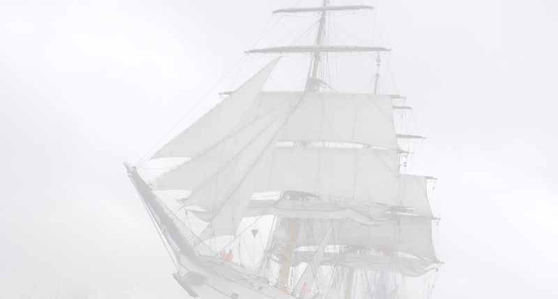 Company Partners-Gorch Fock auf See